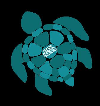 TurtleBC2